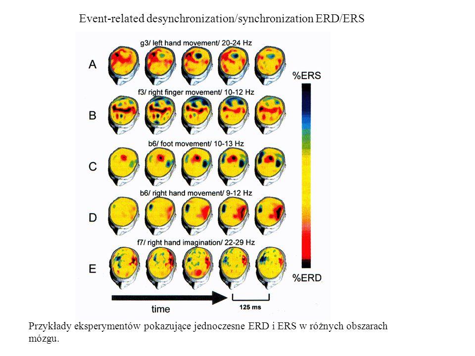 Event-related desynchronization/synchronization ERD/ERS Przykłady eksperymentów pokazujące jednoczesne ERD i ERS w różnych obszarach mózgu.