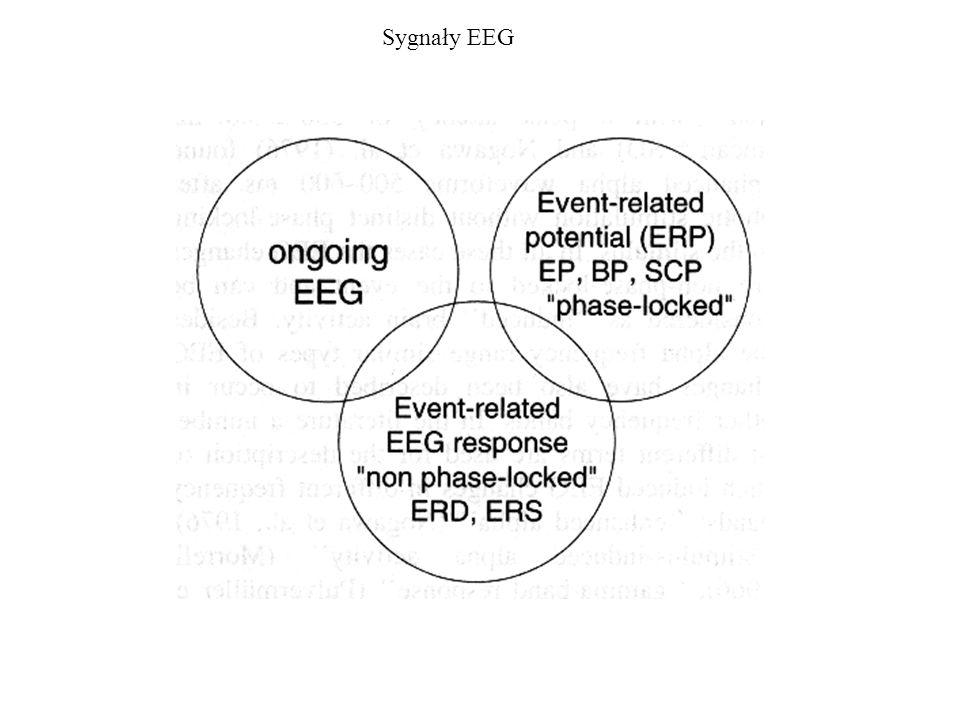 Potencjały wywołane zdarzeniem (Event-related potentials ERP) Potencjał wywołany zdarzeniem (Event-related potentials ERP) – aktywność elektryczna mózgu wywołana bodźcem lub zdarzeniem.