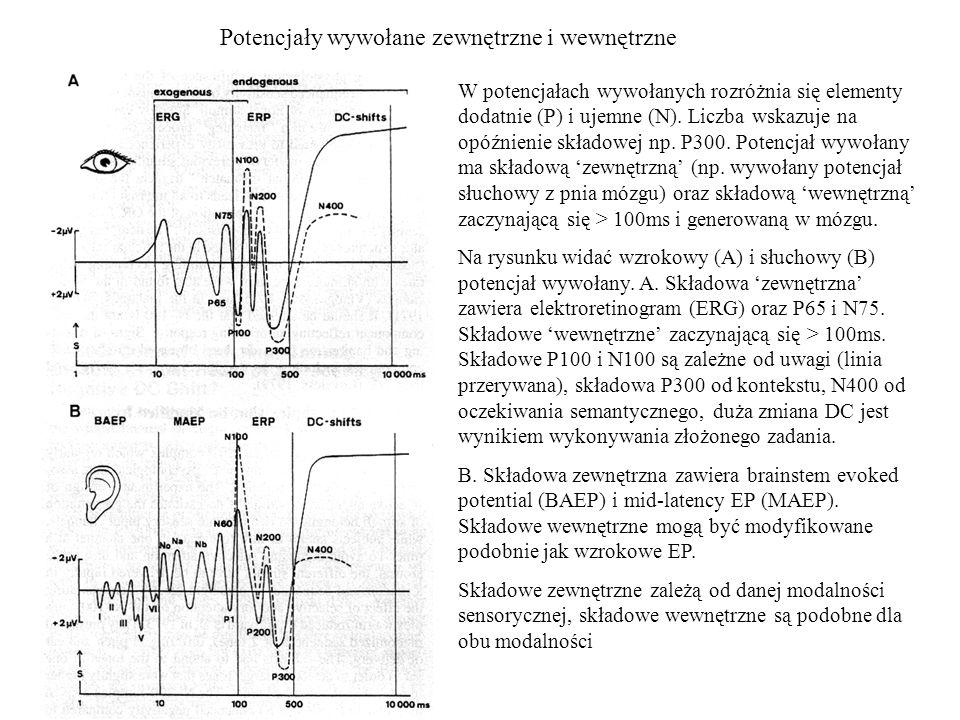 Potencjały wywołane zewnętrzne i wewnętrzne W potencjałach wywołanych rozróżnia się elementy dodatnie (P) i ujemne (N). Liczba wskazuje na opóźnienie