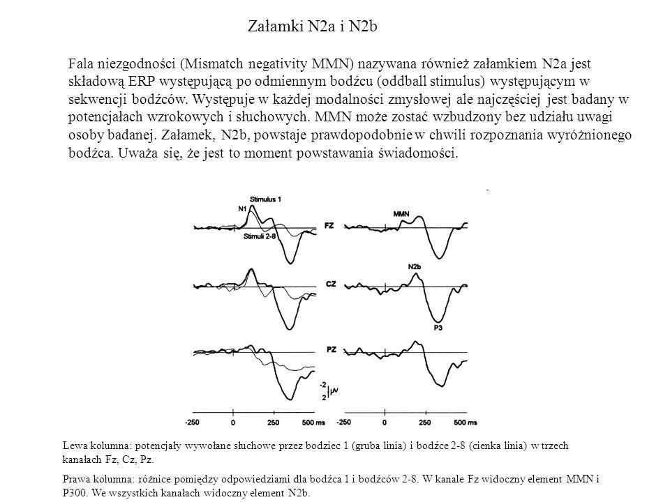 Załamki N2a i N2b Fala niezgodności (Mismatch negativity MMN) nazywana również załamkiem N2a jest składową ERP występującą po odmiennym bodźcu (oddbal