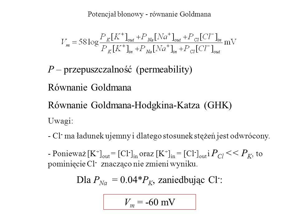 Potencjał błonowy - równanie Goldmana Dla P Na = 0.04*P K, zaniedbując Cl - : P – przepuszczalność (permeability) Równanie Goldmana Równanie Goldmana-