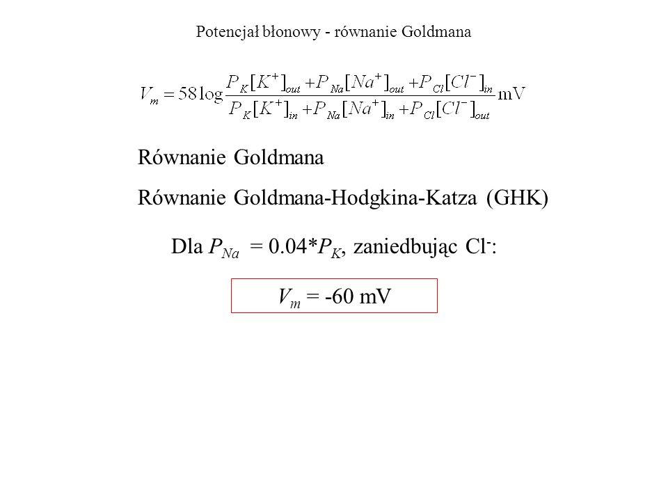 Potencjał błonowy - równanie Goldmana Dla P Na = 0.04*P K, zaniedbując Cl - : Równanie Goldmana Równanie Goldmana-Hodgkina-Katza (GHK) V m = -60 mV
