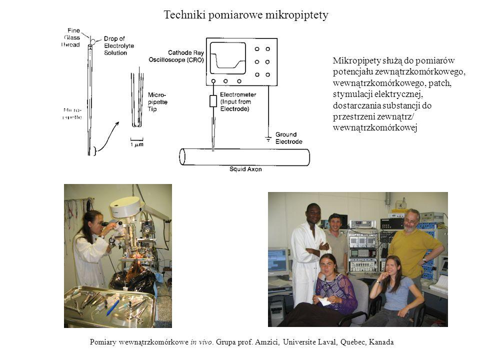 Techniki pomiarowe mikropiptety Pomiary wewnątrzkomórkowe in vivo. Grupa prof. Amzici, Universite Laval, Quebec, Kanada Mikropipety służą do pomiarów