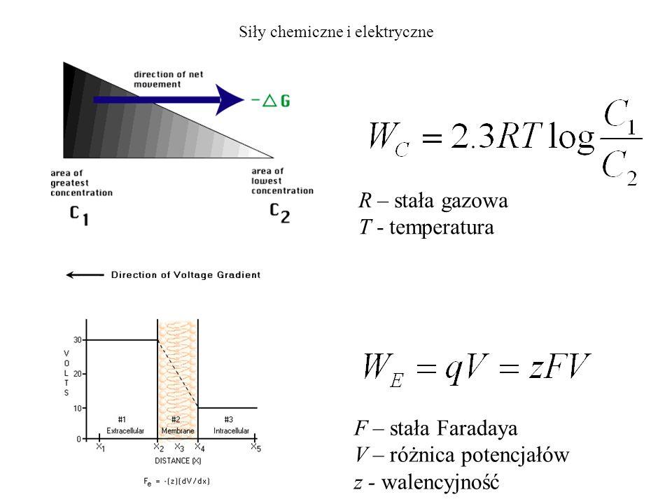 Siły chemiczne i elektryczne R – stała gazowa T - temperatura F – stała Faradaya V – różnica potencjałów z - walencyjność