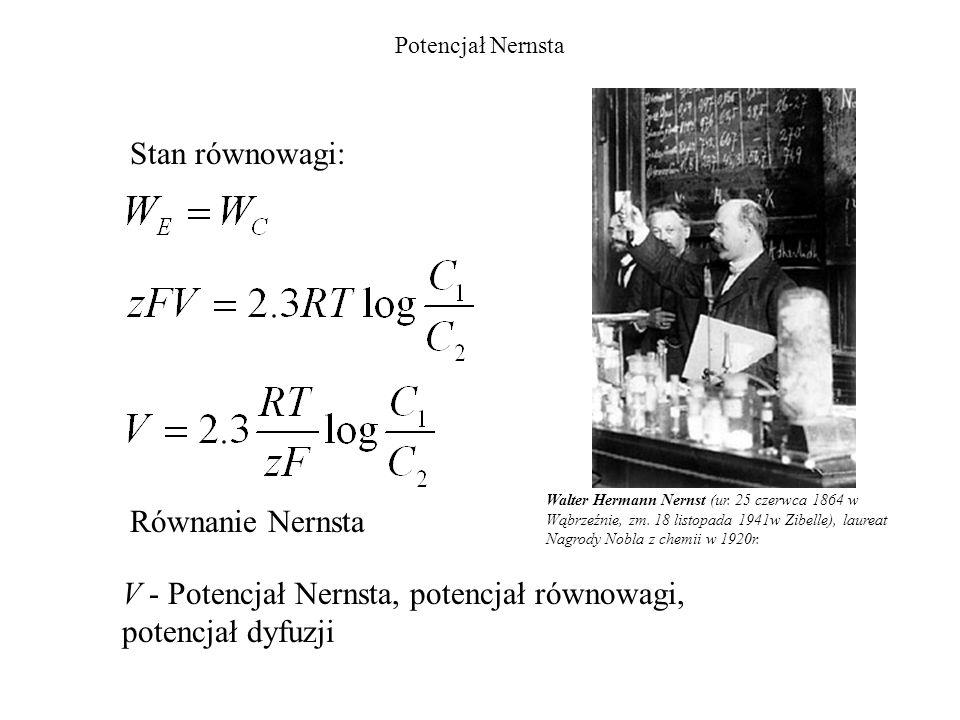 Potencjał Nernsta Równanie Nernsta V - Potencjał Nernsta, potencjał równowagi, potencjał dyfuzji Walter Hermann Nernst (ur. 25 czerwca 1864 w Wąbrzeźn