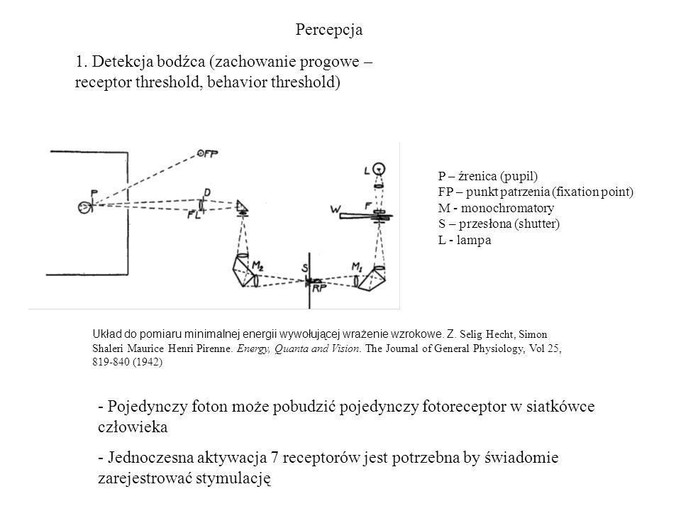 Percepcja 1. Detekcja bodźca (zachowanie progowe – receptor threshold, behavior threshold) Układ do pomiaru minimalnej energii wywołującej wrażenie wz