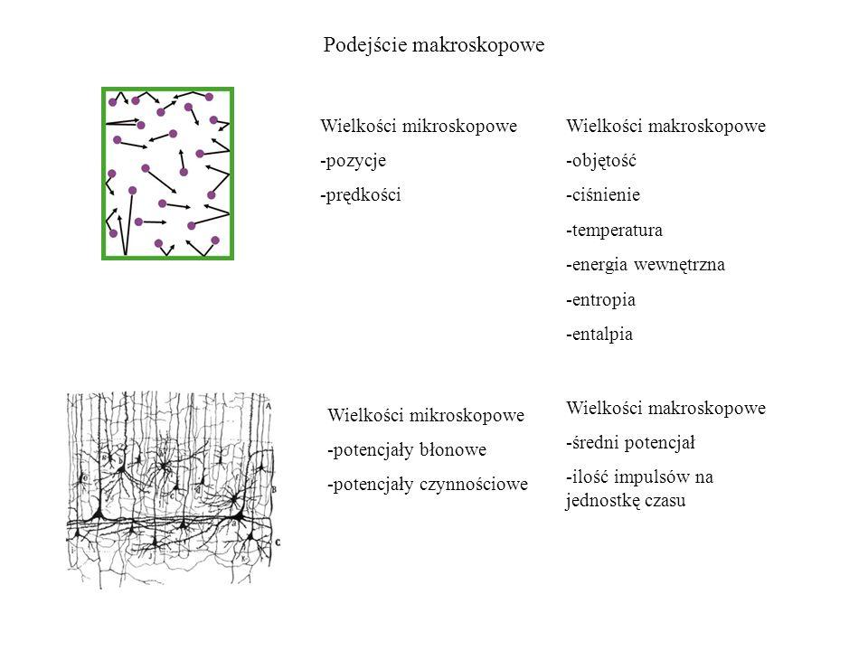 Podejście makroskopowe Wielkości mikroskopowe -pozycje -prędkości Wielkości makroskopowe -objętość -ciśnienie -temperatura -energia wewnętrzna -entrop