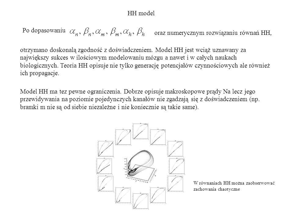 Po dopasowaniu oraz numerycznym rozwiązaniu równań HH, otrzymano doskonalą zgodność z doświadczeniem. Model HH jest wciąż uznawany za największy sukce