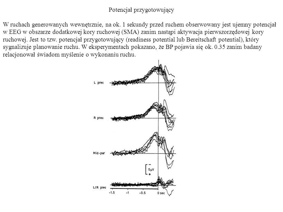 Potencjał przygotowujący W ruchach generowanych wewnętrznie, na ok. 1 sekundy przed ruchem obserwowany jest ujemny potencjał w EEG w obszarze dodatkow