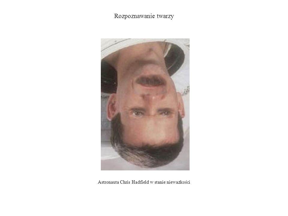 Rozpoznawanie twarzy Efekt tego złudzenia opiera się na dwóch własnościach układu rozpoznawania twarzy.
