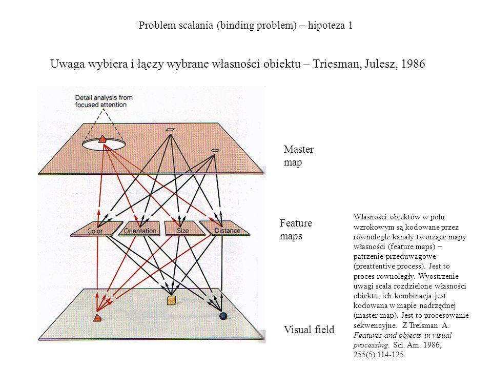 Problem scalania (binding problem) – hipoteza 1 Przykład.