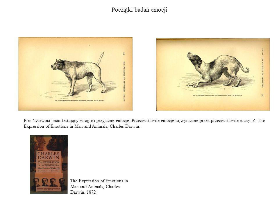 Początki badań emocji The Expression of Emotions in Man and Animals, Charles Darwin, 1872 Pies Darwina manifestujący wrogie i przyjazne emocje. Przeci