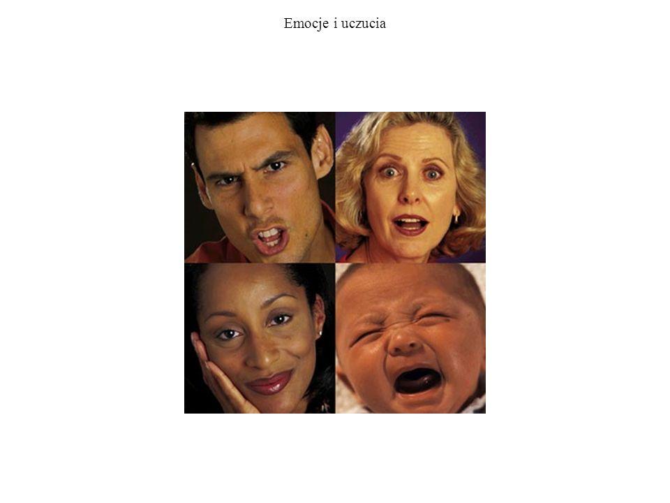 Emocje, uczucia, zachowanie Trzy rodzaje zachowań emocjonalnych.