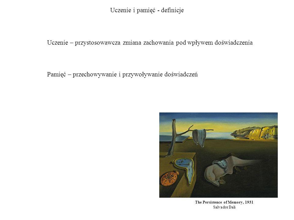 Uczenie i pamięć - definicje The Persistence of Memory, 1931 Salvador Dali Uczenie – przystosowawcza zmiana zachowania pod wpływem doświadczenia Pamięć – przechowywanie i przywoływanie doświadczeń