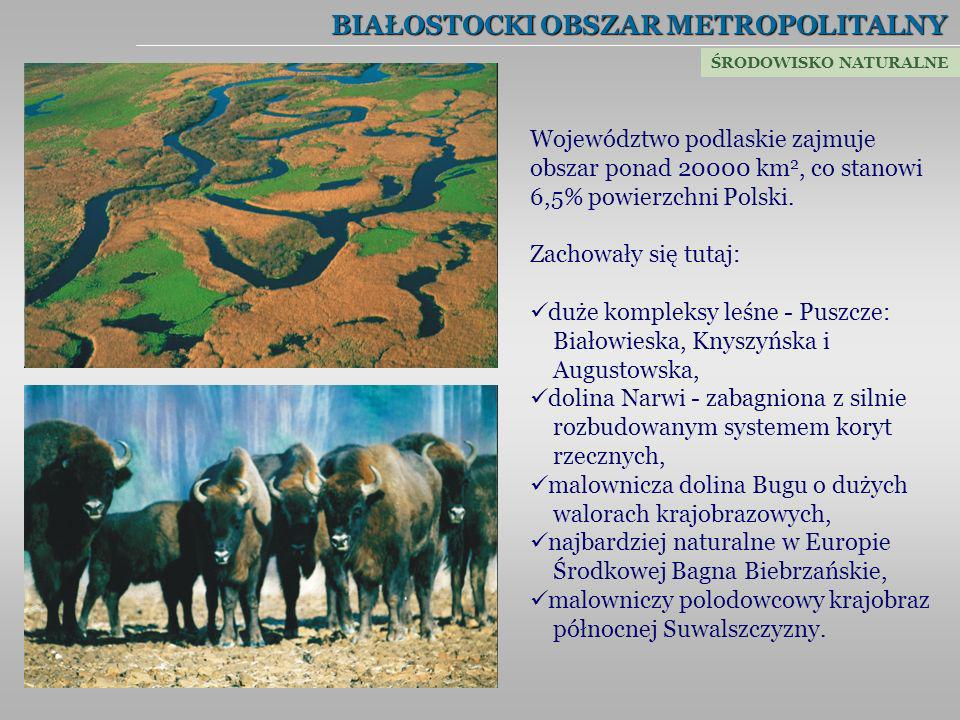 BIAŁOSTOCKI OBSZAR METROPOLITALNY Województwo podlaskie zajmuje obszar ponad 20000 km 2, co stanowi 6,5% powierzchni Polski. Zachowały się tutaj: duże