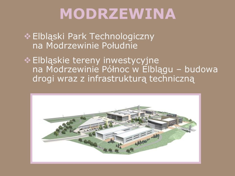 MODRZEWINA Elbląski Park Technologiczny na Modrzewinie Południe Elbląskie tereny inwestycyjne na Modrzewinie Północ w Elblągu – budowa drogi wraz z in