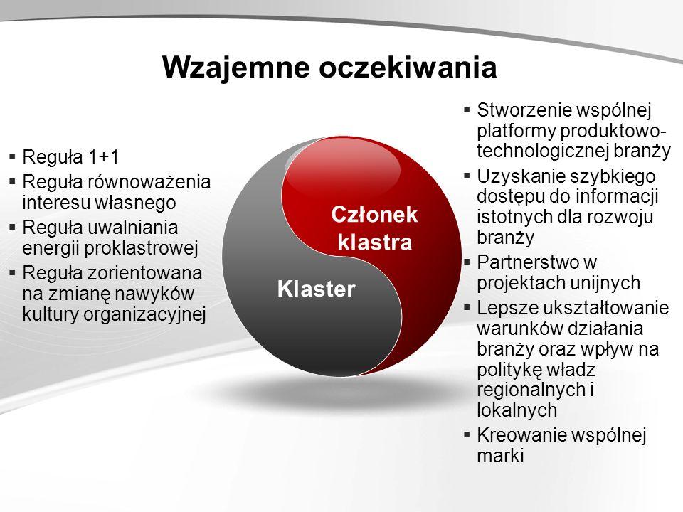 Reguła 1+1 Reguła równoważenia interesu własnego Reguła uwalniania energii proklastrowej Reguła zorientowana na zmianę nawyków kultury organizacyjnej Stworzenie wspólnej platformy produktowo- technologicznej branży Uzyskanie szybkiego dostępu do informacji istotnych dla rozwoju branży Partnerstwo w projektach unijnych Lepsze ukształtowanie warunków działania branży oraz wpływ na politykę władz regionalnych i lokalnych Kreowanie wspólnej marki Klaster Członek klastra Wzajemne oczekiwania