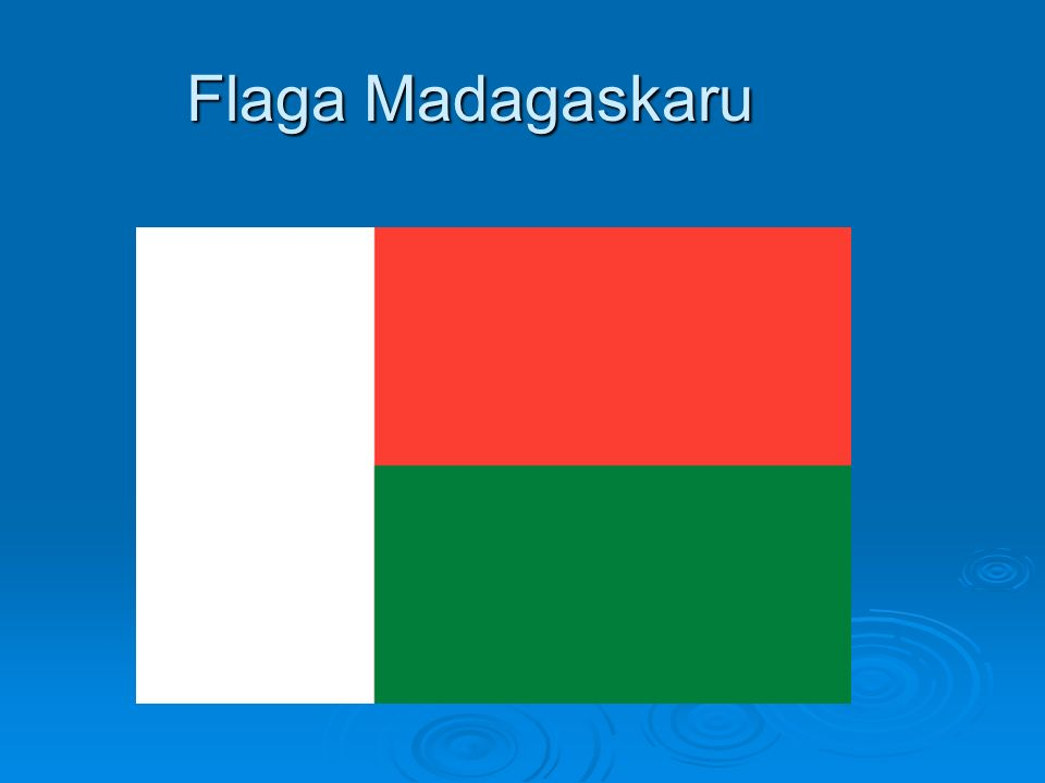 Fauna Madagaskaru Madagaskar odznacza się bogactwem fauny.