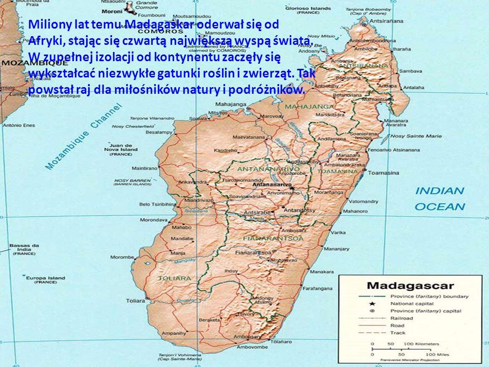 Historia Archeolodzy datują, iż pierwsi ludzie przybyli na Madagaskar pomiędzy II a V wiekiem naszej ery z południowo- wschodniej Azji, najprawdopodobniej z Borneo.