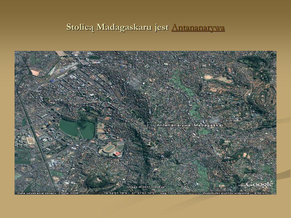GODŁO MADAGASKARU zawiera mapę wyspy, umieszczoną w środku, na białym tle, a poniżej jej znajduje się głowa rogatego gnu brunatnego.