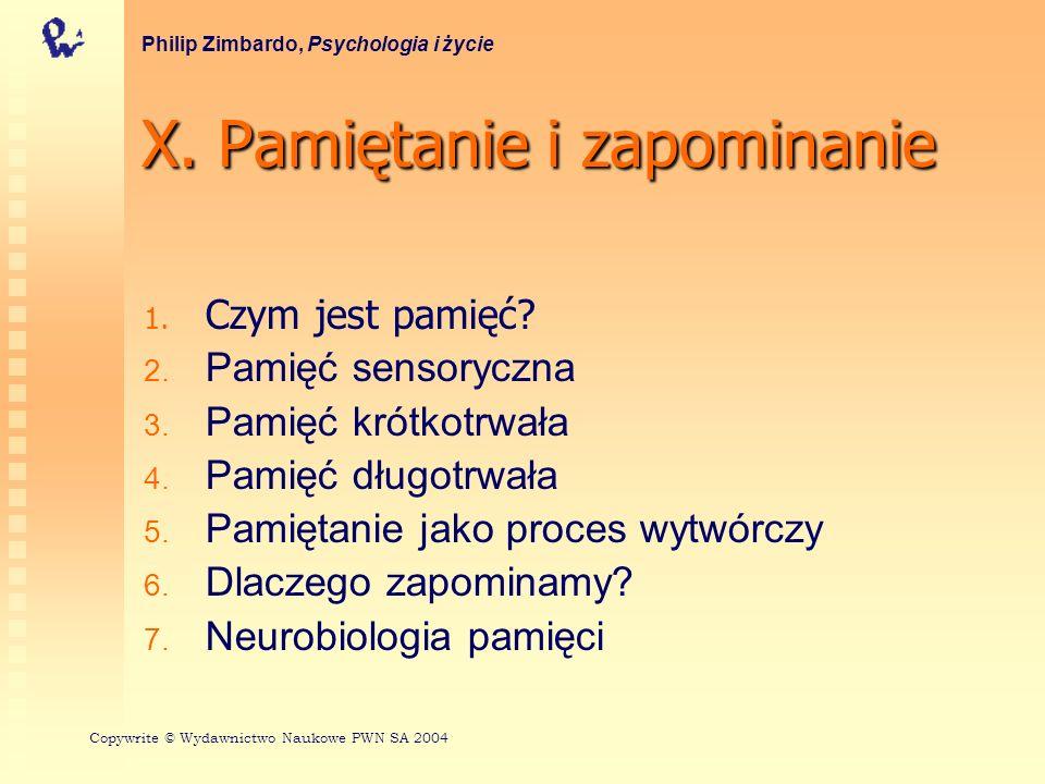 Przechowywanie w pamięci długotrwałej Reprezentowanie informacji Rozpoznawanie zapachów Philip Zimbardo, Psychologia i życie Copywrite © Wydawnictwo Naukowe PWN SA 2004