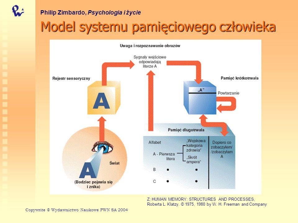 Model systemu pamięciowego człowieka Philip Zimbardo, Psychologia i życie Copywrite © Wydawnictwo Naukowe PWN SA 2004 Z: HUMAN MEMORY: STRUCTURES AND