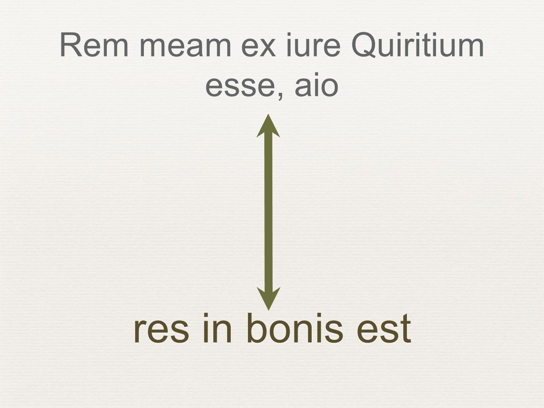 Rem meam ex iure Quiritium esse, aio res in bonis est