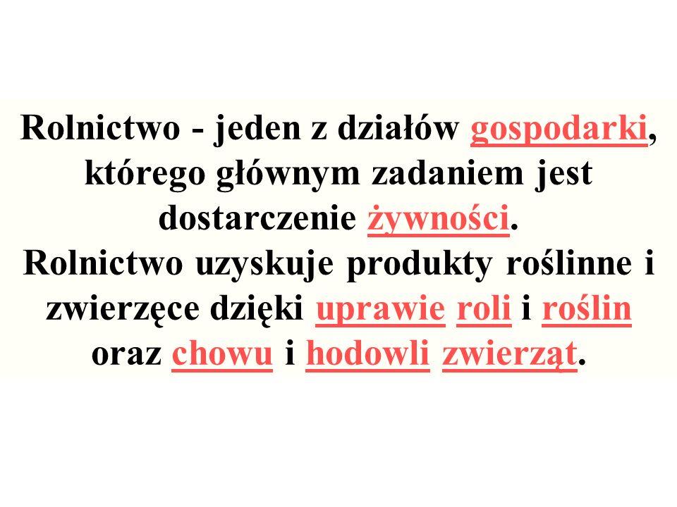 -korzeniowe (np.
