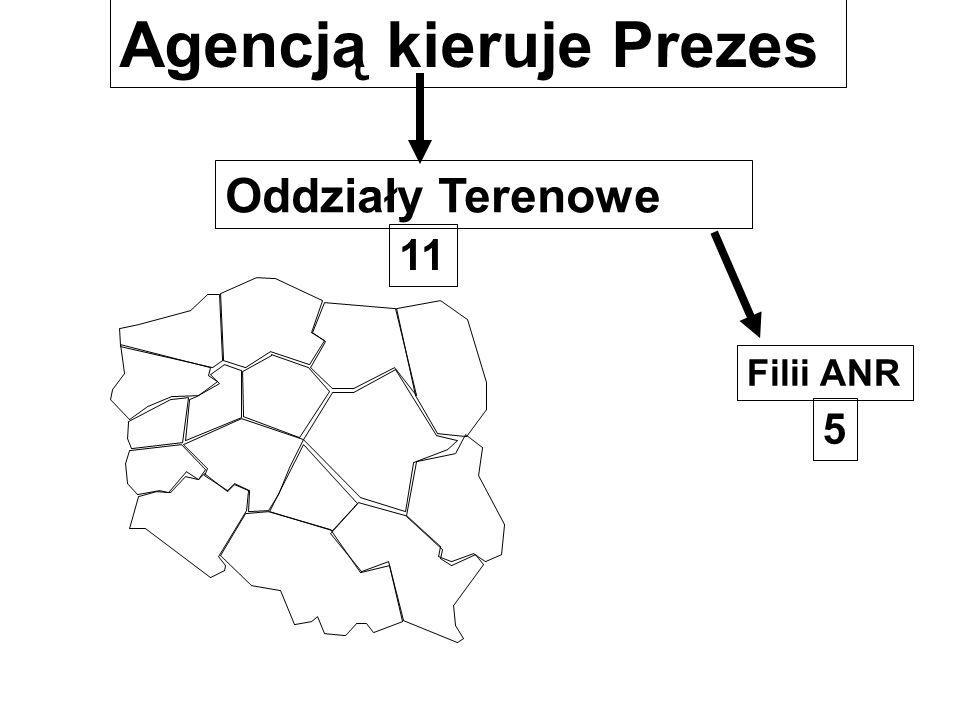 Oddziały Terenowe Agencją kieruje Prezes Filii ANR 11 5