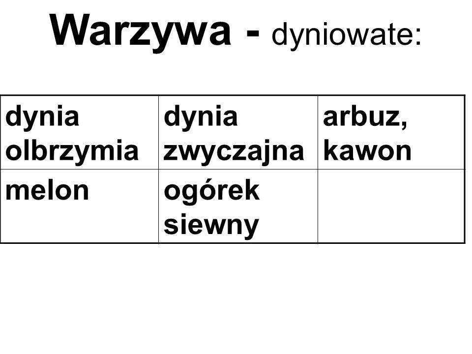 dynia olbrzymia dynia zwyczajna arbuz, kawon melonogórek siewny Warzywa - dyniowate: