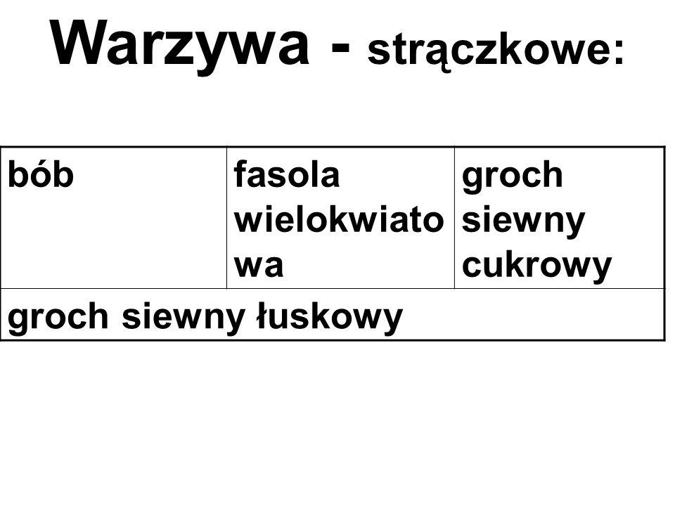bóbfasola wielokwiato wa groch siewny cukrowy groch siewny łuskowy Warzywa - strączkowe: