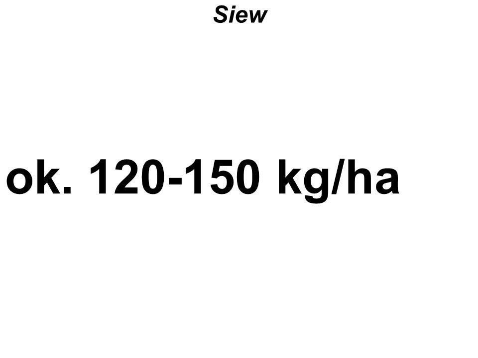 Siew ok. 120-150 kg/ha