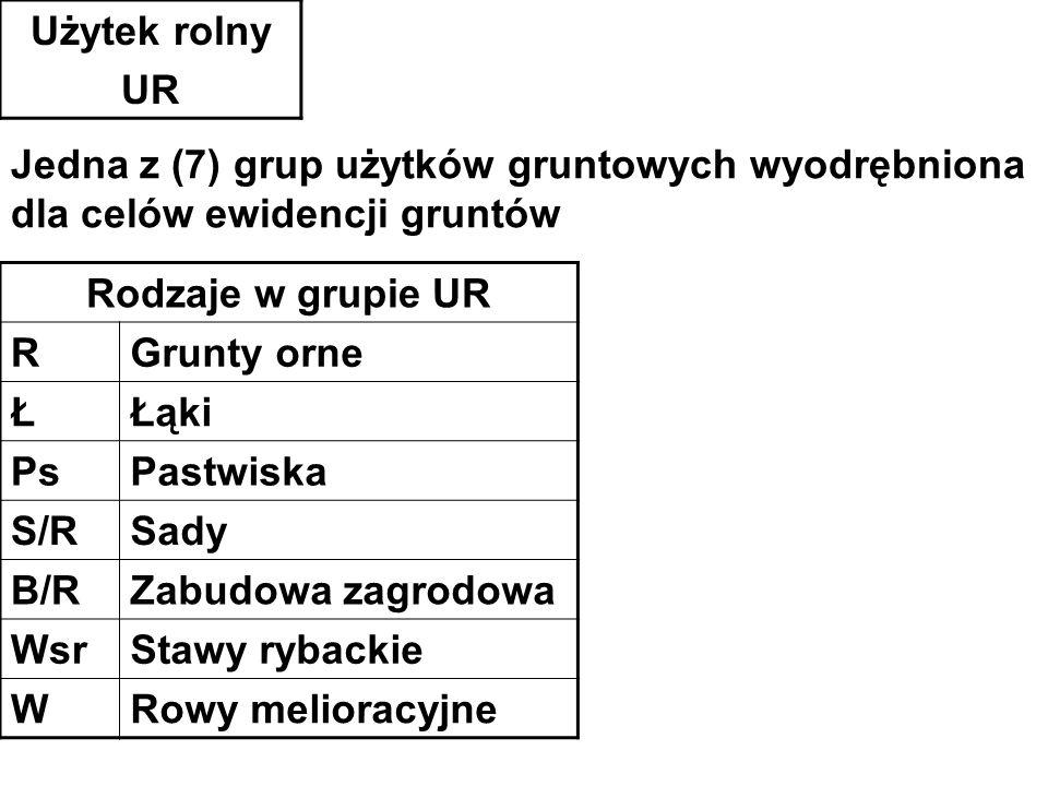 Użytek rolny UR Rodzaje w grupie UR RGrunty orne ŁŁąki PsPastwiska S/RSady B/RZabudowa zagrodowa WsrStawy rybackie WRowy melioracyjne Jedna z (7) grup