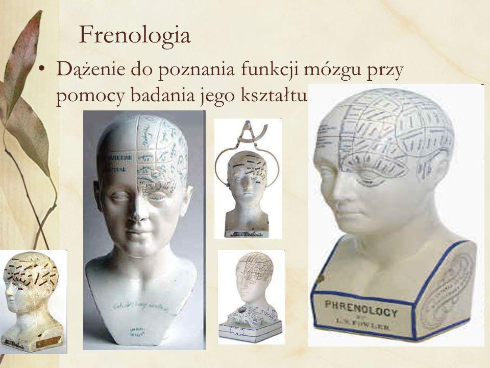 12 Frenologia Dążenie do poznania funkcji mózgu przy pomocy badania jego kształtu