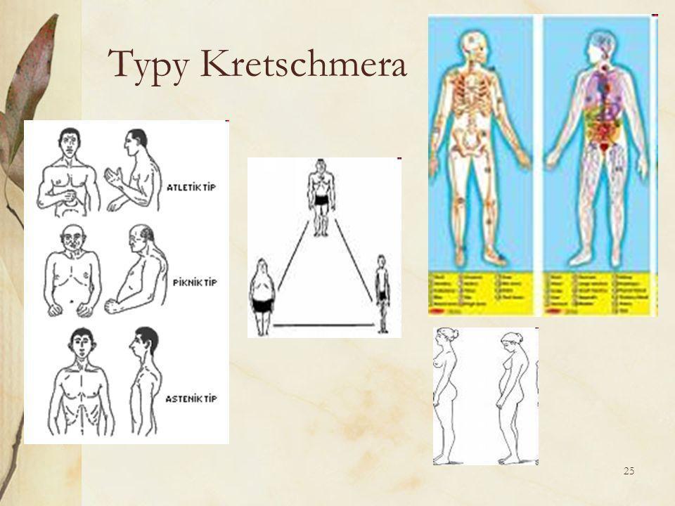 25 Typy Kretschmera