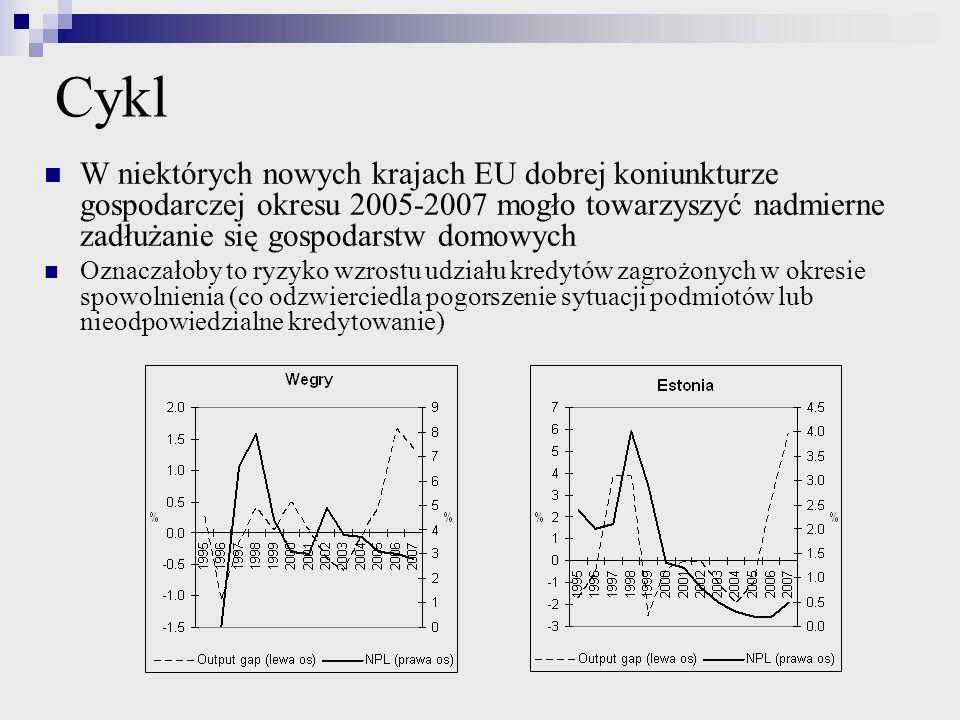 Cykl W niektórych nowych krajach EU dobrej koniunkturze gospodarczej okresu 2005-2007 mogło towarzyszyć nadmierne zadłużanie się gospodarstw domowych