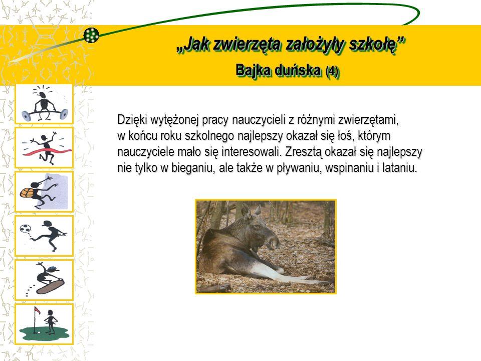 Jak zwierzęta założyły szkołę Bajka duńska (4) Jak zwierzęta założyły szkołę Bajka duńska (4) Dzięki wytężonej pracy nauczycieli z różnymi zwierzętami