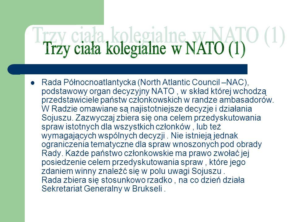 Rada Północnoatlantycka (North Atlantic Council –NAC), podstawowy organ decyzyjny NATO, w skład której wchodzą przedstawiciele państw członkowskich w