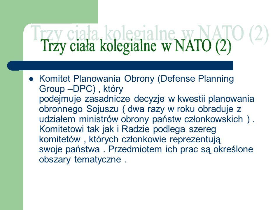 Komitet Planowania Obrony (Defense Planning Group –DPC), który podejmuje zasadnicze decyzje w kwestii planowania obronnego Sojuszu ( dwa razy w roku o