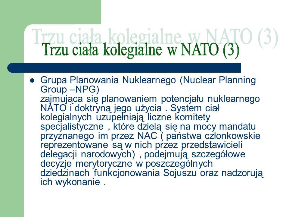 Grupa Planowania Nuklearnego (Nuclear Planning Group –NPG) zajmująca się planowaniem potencjału nuklearnego NATO i doktryną jego użycia. System ciał k