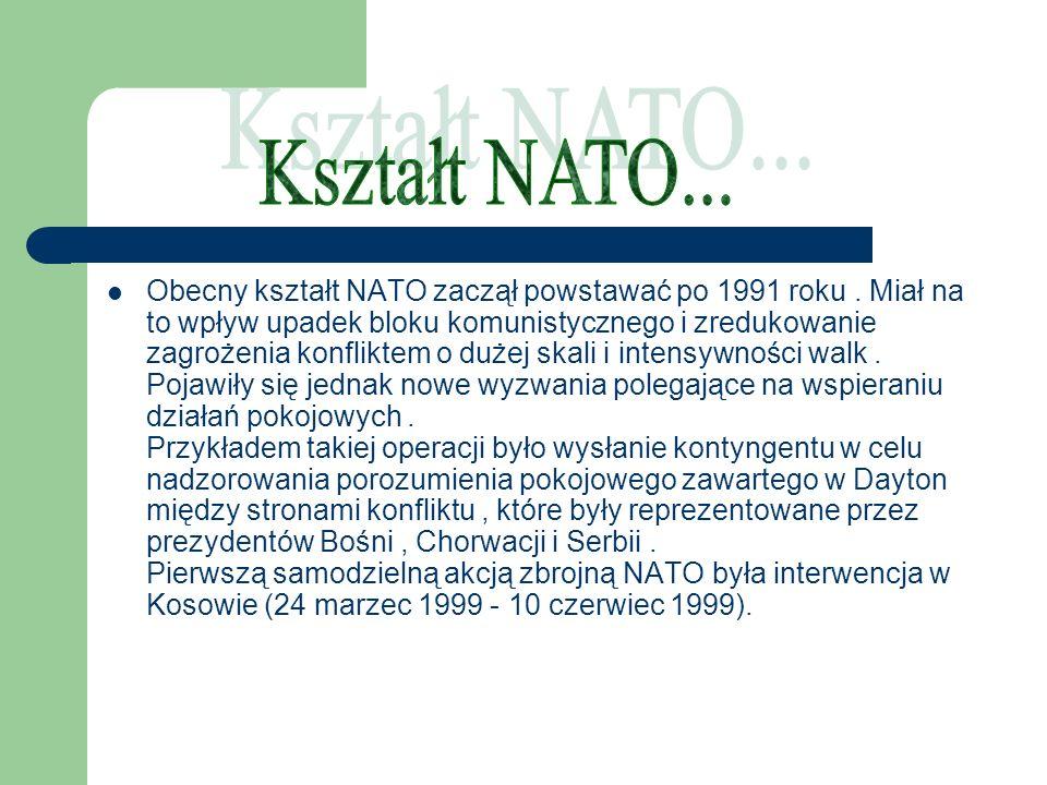 Obecny kształt NATO zaczął powstawać po 1991 roku. Miał na to wpływ upadek bloku komunistycznego i zredukowanie zagrożenia konfliktem o dużej skali i