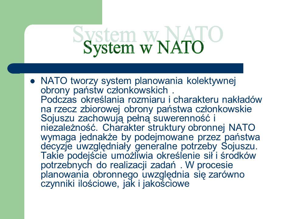 - zmieniająca się sytuacja polityczna - oceny dokonywane przez dowódców wojskowych NATO, dotyczące wielkości sił zbrojnych potrzebnych do wykonania zadań - postęp naukowy - rozwój technologiczny - zasada równego podziału ról, ryzyka i odpowiedzialności - możliwości ekonomiczne poszczególnych państw członkowskich