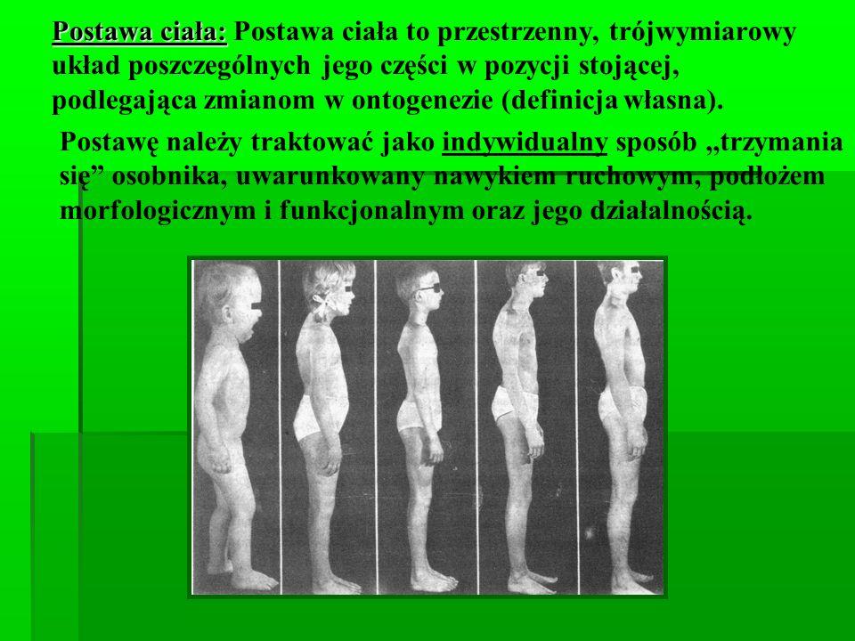 Określenie poprawności i niepoprawności postawy ciała Zmienność w toku ontogenezy: - kształtowanie się krzywizn kręgosłupa o okresie całego rozwoju dziecka, - różne proporcje ciała w różnych okresach życia, - różny rozkład segmentarnych środków ciężkości, a co za tym idzie inna praca mięśni, Zmienność postawy, nawet w ciągu dnia pod wpływem zmęczenia, różnych stanów psychicznych (radość, strach, przygnębienie) Postawa ciała jest uzależniona od architektury kostno – stawowo – mięśniowej (połączenie łańcuchowe).