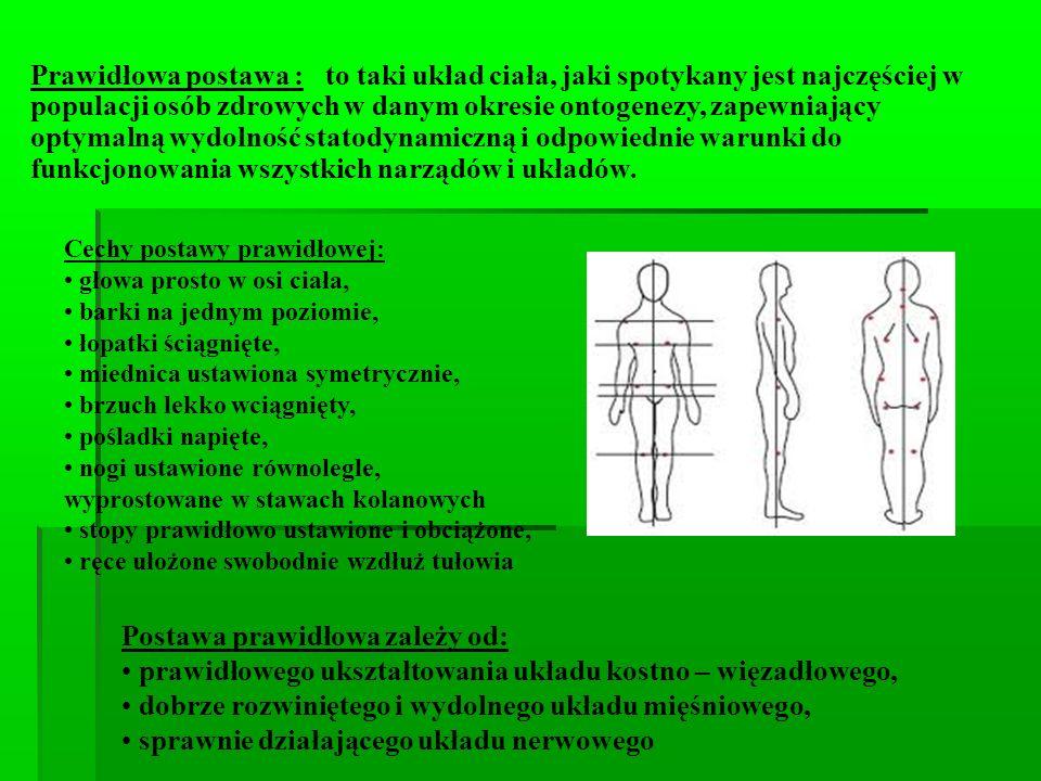 Prawidłowa postawa : to taki układ ciała, jaki spotykany jest najczęściej w populacji osób zdrowych w danym okresie ontogenezy, zapewniający optymalną