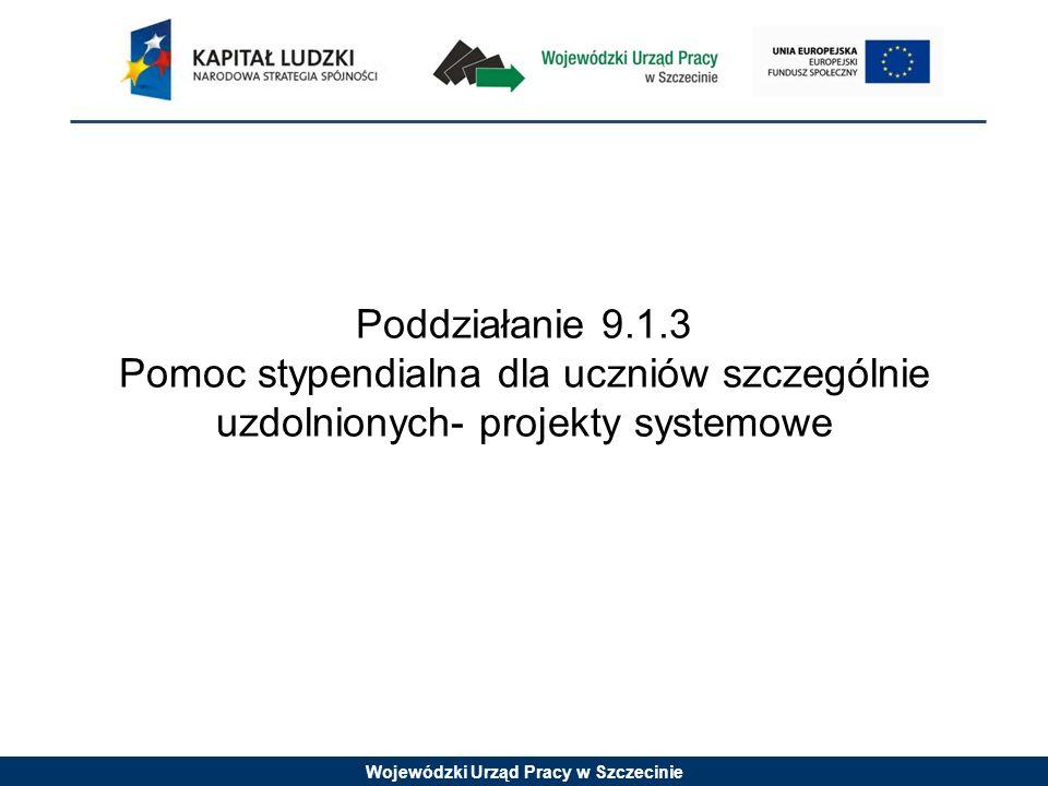 Wojewódzki Urząd Pracy w Szczecinie Poddziałanie 9.1.3 Pomoc stypendialna dla uczniów szczególnie uzdolnionych- projekty systemowe