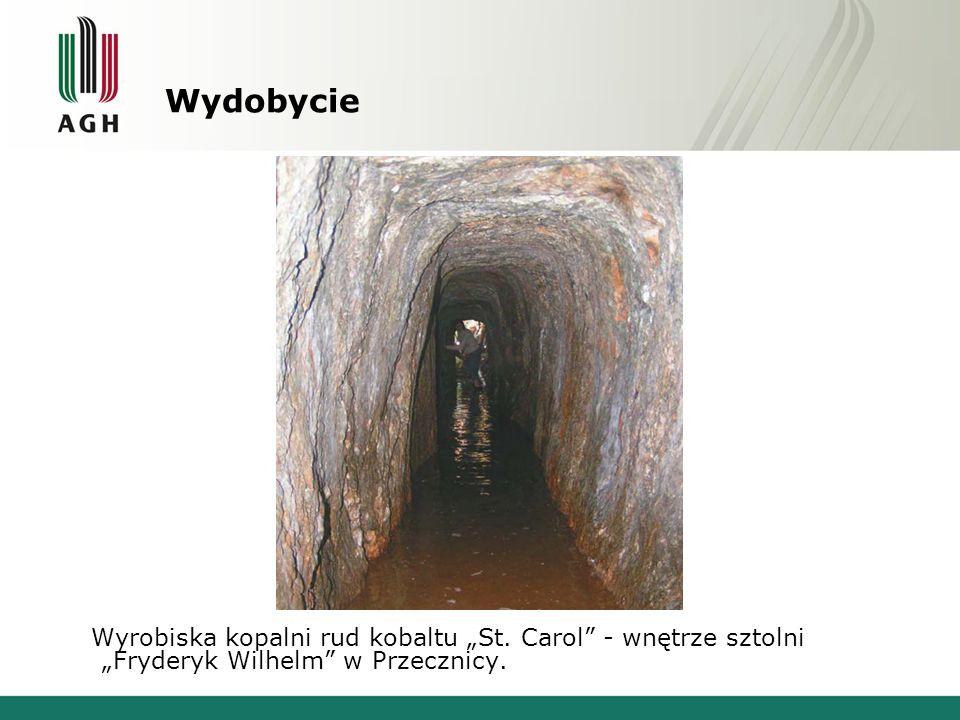 Wydobycie Wyrobiska kopalni rud kobaltu St. Carol - wnętrze sztolni Fryderyk Wilhelm w Przecznicy.