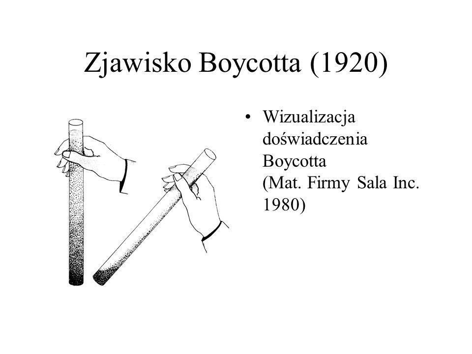 Zjawisko Boycotta (1920) Wizualizacja doświadczenia Boycotta (Mat. Firmy Sala Inc. 1980)