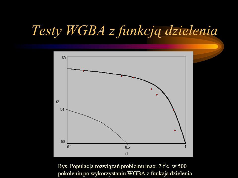 Testy WGBA z funkcją dzielenia Rys. Populacja rozwiązań problemu max. 2 f.c. w 500 pokoleniu po wykorzystaniu WGBA z funkcją dzielenia