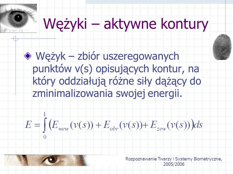 Rozpoznawanie Twarzy i Systemy Biometryczne, 2005/2006 Wężyki – aktywne kontury Wężyk – zbiór uszeregowanych punktów v(s) opisujących kontur, na który