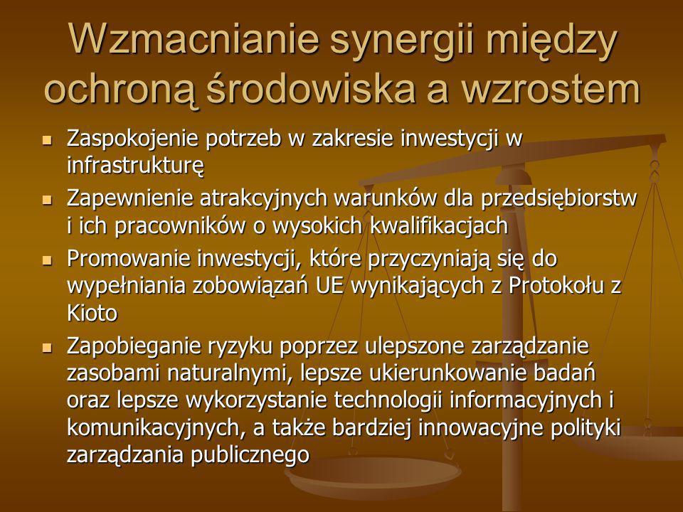 Wzmacnianie synergii między ochroną środowiska a wzrostem Zaspokojenie potrzeb w zakresie inwestycji w infrastrukturę Zaspokojenie potrzeb w zakresie